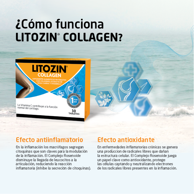 LITOZIN COLLAGEN